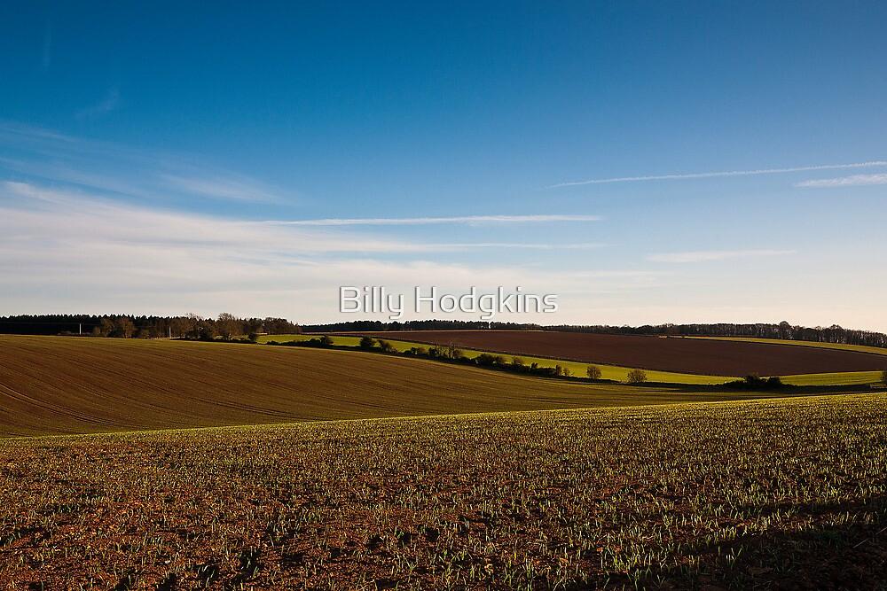 Spring Crop  by Billy Hodgkins