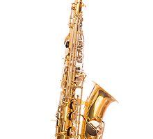 Alto Saxophone by Matthew Jones