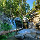 Mountain Stream Paradise 3 by Dianne Phelps