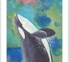 Breaching Orca Sticker