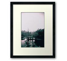 Island, Lake at Historic Woodlawn Framed Print