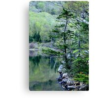 Spring Morning on Profile Lake Canvas Print