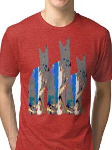 Triple Cat Tri-blend T-Shirt