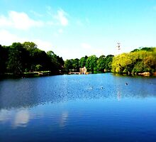 The Lake, University Park, Nottingham by Robert Steadman