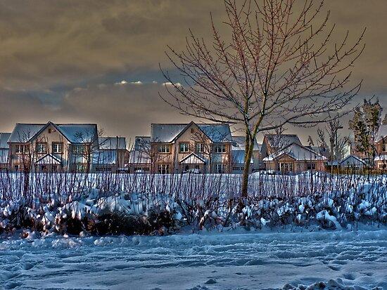 Winter Wonderland by dgscotland