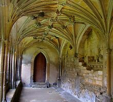 Gothic Cloisters - Lacock abbey- Harry Potter location.. by rennaisance
