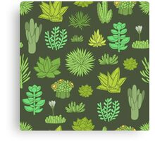 Succulents Canvas Print