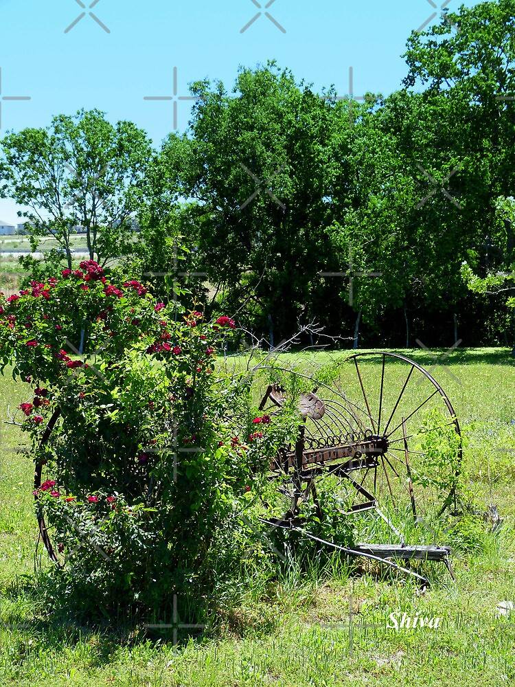 Rural Texas by Shiva77