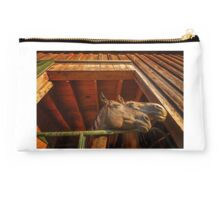 Mares in the Barn Studio Pouch