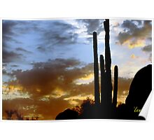 Desert Sky Poster