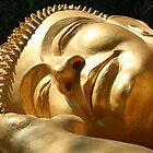 Sleeping Buddha by KelseyGallery
