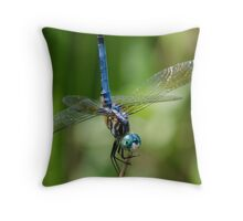 Olympian! Throw Pillow