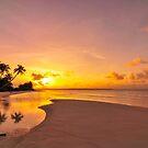 Palm Reflections at Kite Beach by Karen Willshaw