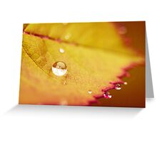 All That Glitters II Greeting Card