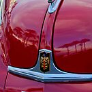 1948 Dodge Ram Hood Ornament and Emblem by Jill Reger