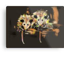 Funcky Baby Possums Metal Print