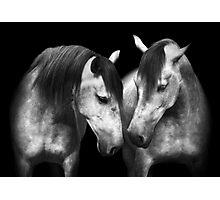 Quintero Photographic Print