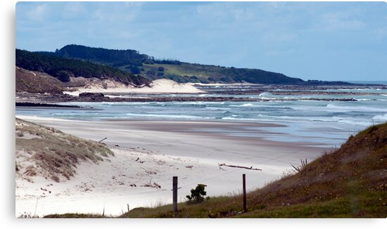 Down the beach - northland NZ by Jenny Dean