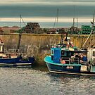 The Harbour Seahouses by Trevor Kersley