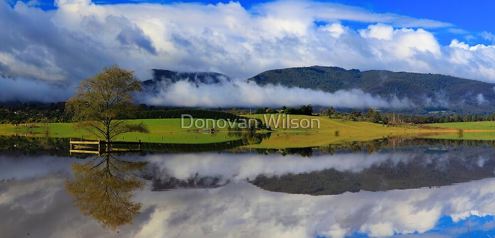 A flood of opportunities .The yarra Flats .Healesville  by Donovan Wilson