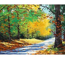 Autumn Road Photographic Print