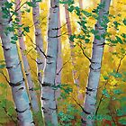 Aspen Trees by Graham Gercken