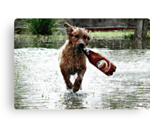 Any one for Beer ? Canvas Print
