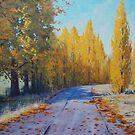 Road To Tarana by Graham Gercken