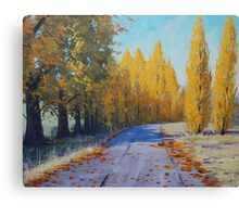 Road To Tarana Canvas Print