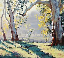 Morning Light Gums by Graham Gercken