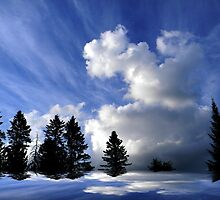 The Cloud ! by Elfriede Fulda