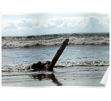 Driftwood with tide rolling in Poster