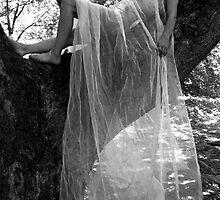 White Veil No.2 by David Robinson