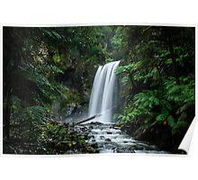 Hopetoun Falls in the Beech Forest Poster