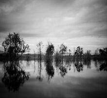 Day break at Lake Eildon by autumnleaf