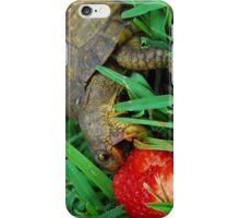 Turtle iPhone Case/Skin