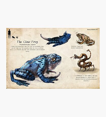 The Claw Frog Photographic Print