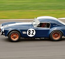 Mark Williams Cobra No 82 by Willie Jackson