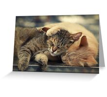 Real frienship :) Greeting Card