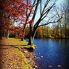 Fall Day on the Grand River  by Brandonleo