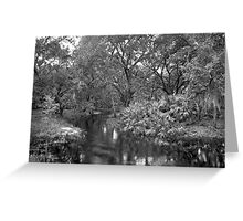 Slough. Three Lakes W.M.A. Greeting Card