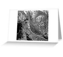 Fallen Tree. Highlands Hammock S.P. Greeting Card