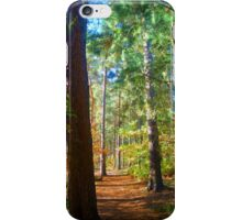 Awesome Autumnal Arboreal Amble.....!!!! iPhone Case/Skin