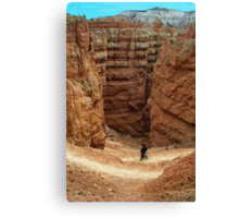 A walk in Bryce Canyon Canvas Print