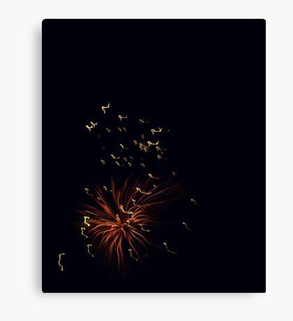 Firework Anemone Canvas Print