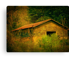 Deep in the woods there sits an abandoned farm Canvas Print