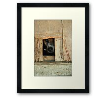 The Face of Hoarding Framed Print