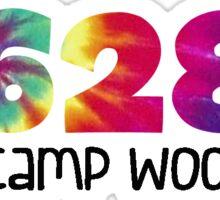 YMCA Camp Woodstock Sticker