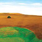 The Lonesome Landscape by Natasha M
