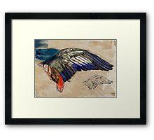 L'Aile de Durer ( Durer's wing) Framed Print